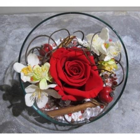 Rose unique dans demi-sphère - Fleurs stabilisées