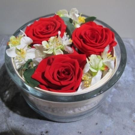 Tapis de roses - Fleurs stabilisées
