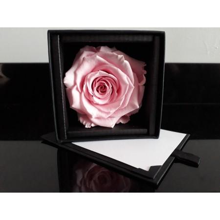 Coffret de rose éterelle rose - Original