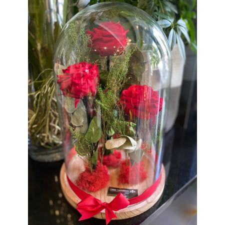 Roses éternelles sous cloche - Déclaration d'amour, Fleurs stabilisées