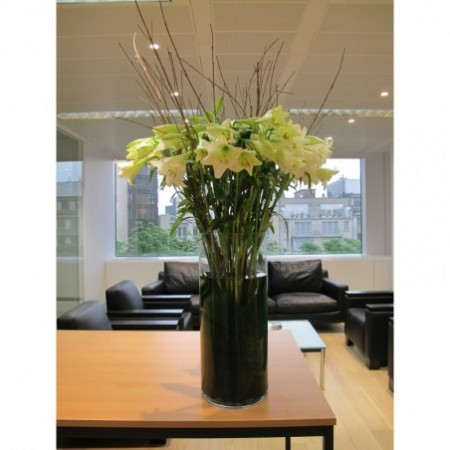 Fleurs de lys - Arrangements